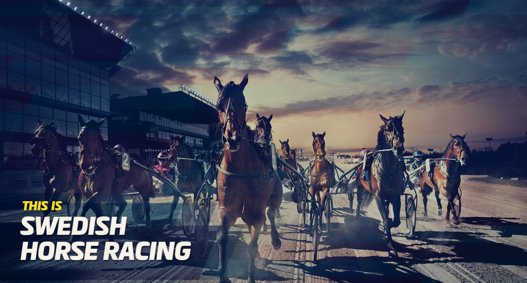 Swedish Horse Racing Tips